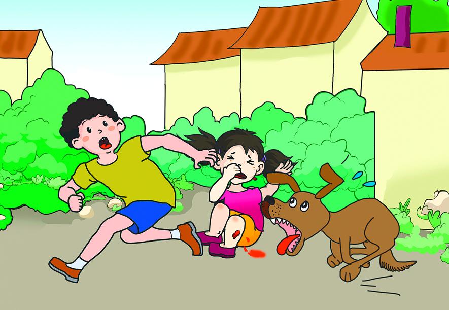 五:教宝贝儿避免意外伤害