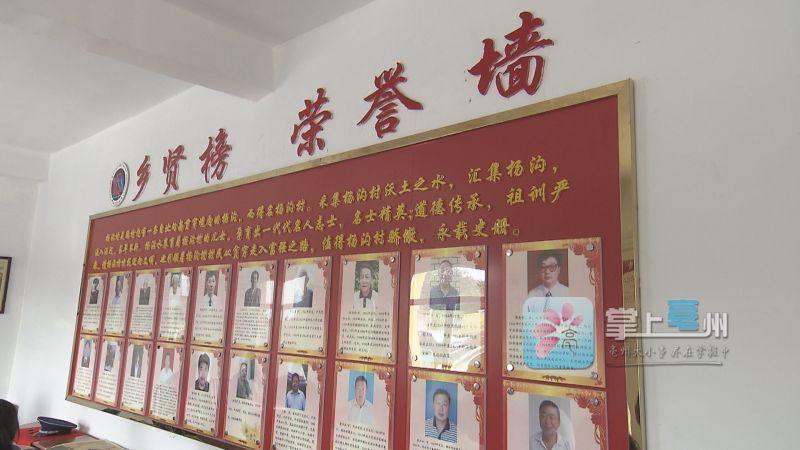 亳州蒙城:乡贤文化领衔村民自治